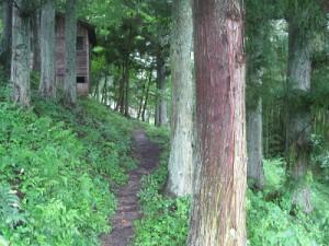 IMG_5705稲武の森